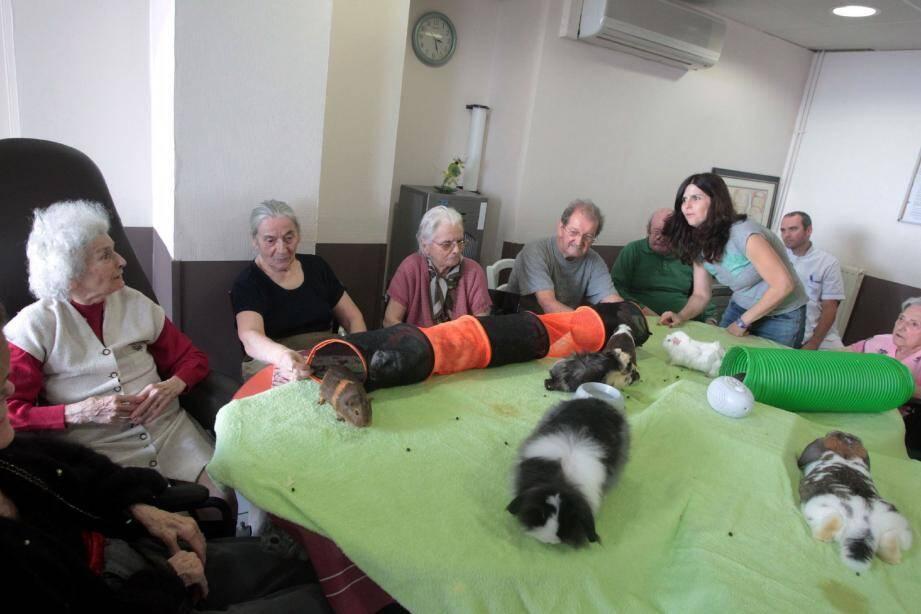 Les résidants de la maison de retraite des Roches Grises ont partagé leur après-midi avec des invités originaux.