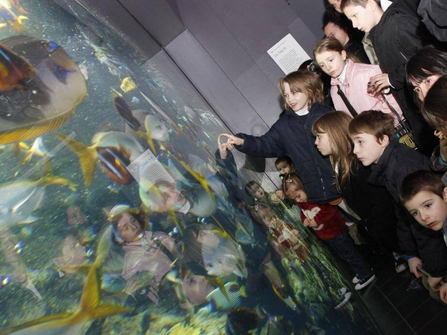 Avec ses aquariums géants, le musée océanographique émerveille toujours autant les enfants.