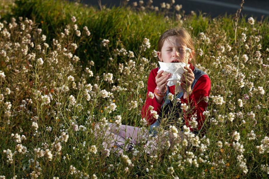 Les allergies au pollen débutent chez les enfants de plus en plus jeunes.