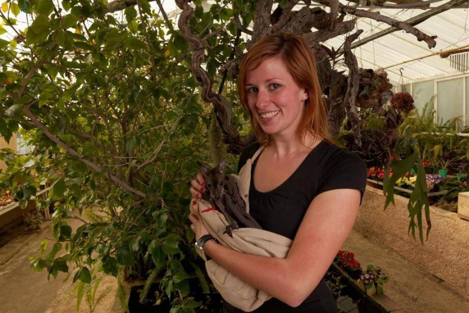 Hippie le wallaby du zoo de Sanary