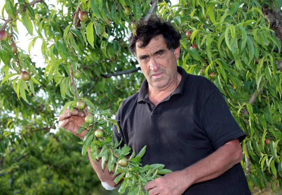 Pour Jean-Charles Orso, agriculteur cannois, comme pour ses collègues du bassin cannois : « La pluie incessante de mars, mais également le manque d'ensoleillement et de chaleur ont retardé les cultures.