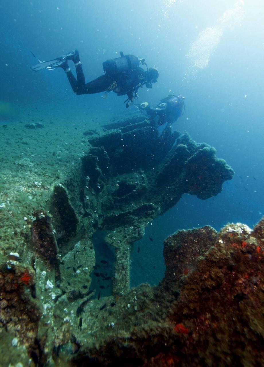 L'épave du Ramon, un premier exercice pour les plongeurs de niveau 1.