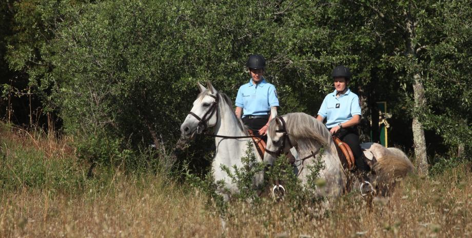 Depuis samedi et jusqu'au 18 août, une équipe de la gendarmerie patrouille à cheval dans la réserve naturelle.