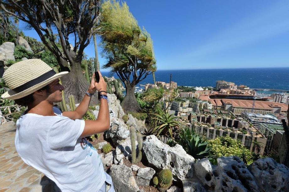 En plus d'apprécier les végétaux, les visiteurs sont nombreux à immortaliser la belle vue.
