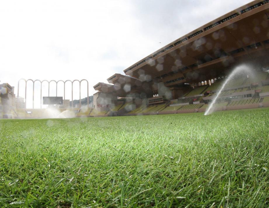 Avant la réception de Montpellier, le 18 août, la pelouse du Louis-II est dans un parfait état.