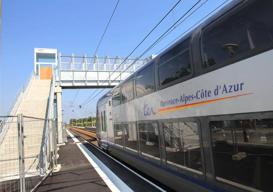 L'agression s'est déroulée sur la ligne régionale dans le sens Marseille-Toulon.Les deux frères de 23 et 28 ans ont été interpellés en gare d'Ollioules-Sanary par les policiers nationaux.