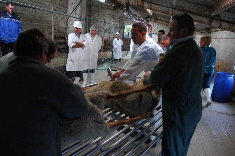 Un seul abattoir temporaire agréé existe dans le département, à Escragnolles.
