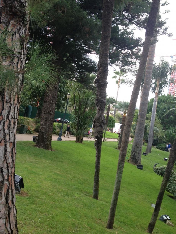 Le DVD propose une promenade historique dans les jardins des Boulingrins et la Petite Afrique.
