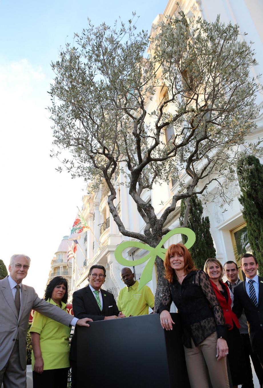 Pour l'écolabellisation, le Negresco s'est offert une mascotte : un olivier, symbole vert par excellence.
