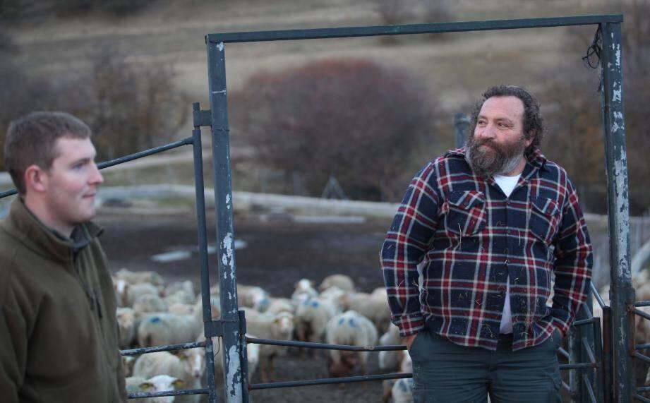 Bernard Bellini n'a même plus la haine. Plutôt de la tristesse pour ses bêtes et son fils qui ne pourra plus reprendre l'exploitation dans ces conditions.