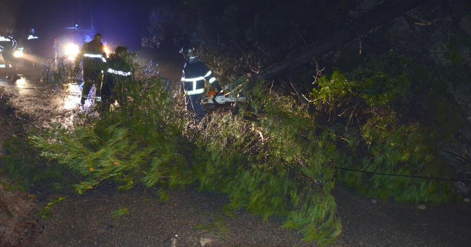 Les pompiers ont attaqué la carcasse de l'arbre à l'aide de tronçonneuses.