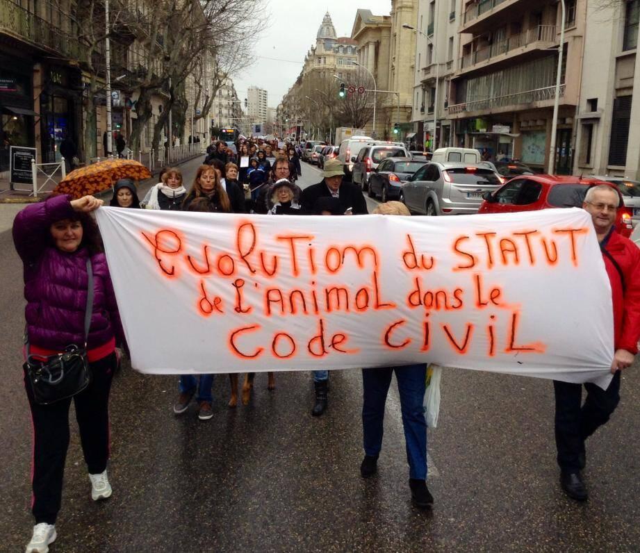 250 personnes marchent à Toulon contre la maltraitance des animaux