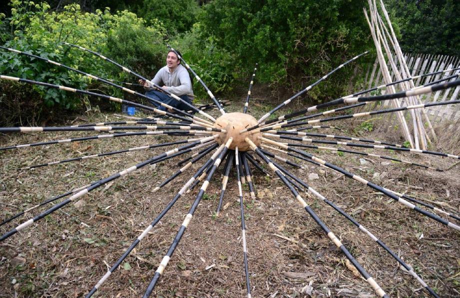 L'oursin diadème réalisé en cannes de Provence par Khan, artiste venu de Gironde.