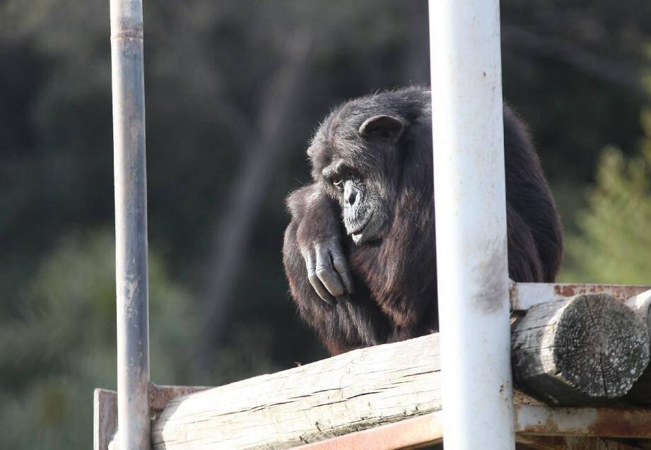 Un signe au zoo de Fréjus