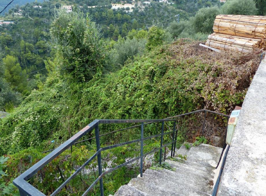 C'est dans ces escaliers situés sur la Départementale 24 que le corps sans vie de la jeune femme de 32 ans a été découvert par les gendarmes mentonnais.
