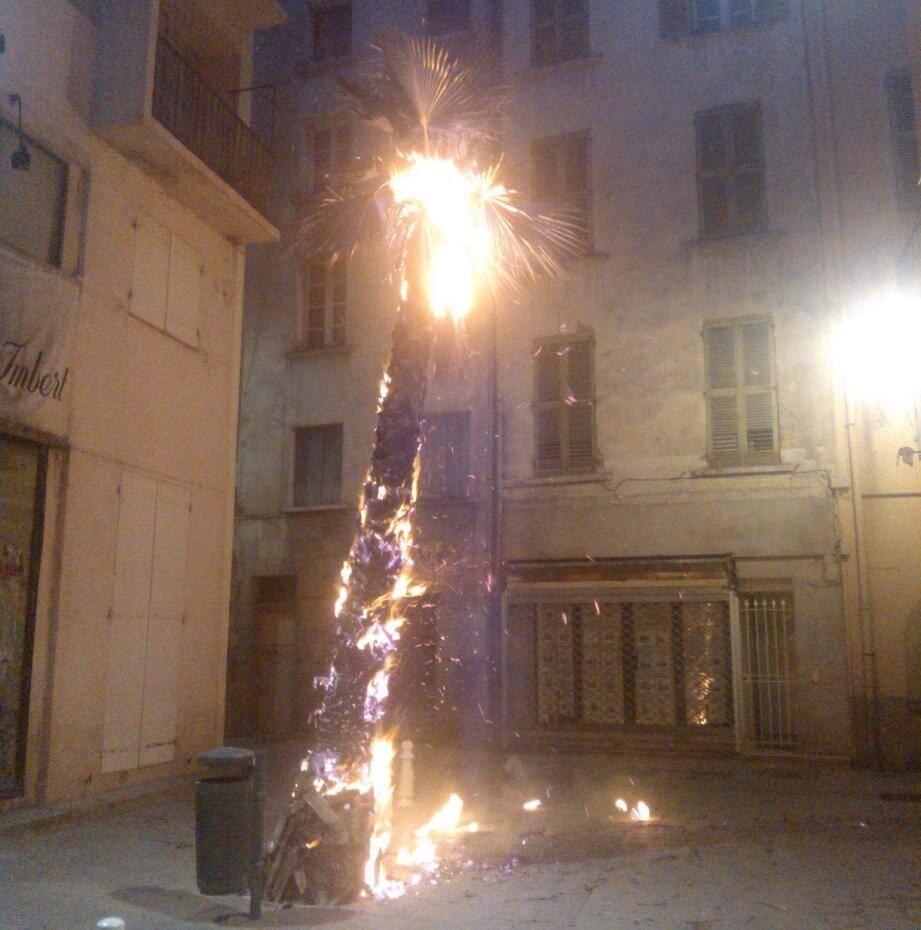 Cet incendie, dont l'origine humaine ne fait guère de doute, a pu être éteint sans problème par les pompiers de Toulon