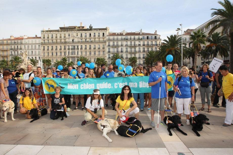 Les participants se sont réunis sur la place de la Liberté avant de rejoindre les plages du Mourillon.