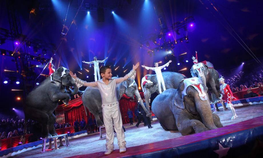 La piste aux étoiles de Fontvieille reprend du service dès le 15 janvier, là même où, en janvier dernier, la famille Gartner avait impressionné avec son numéro d'éléphants.