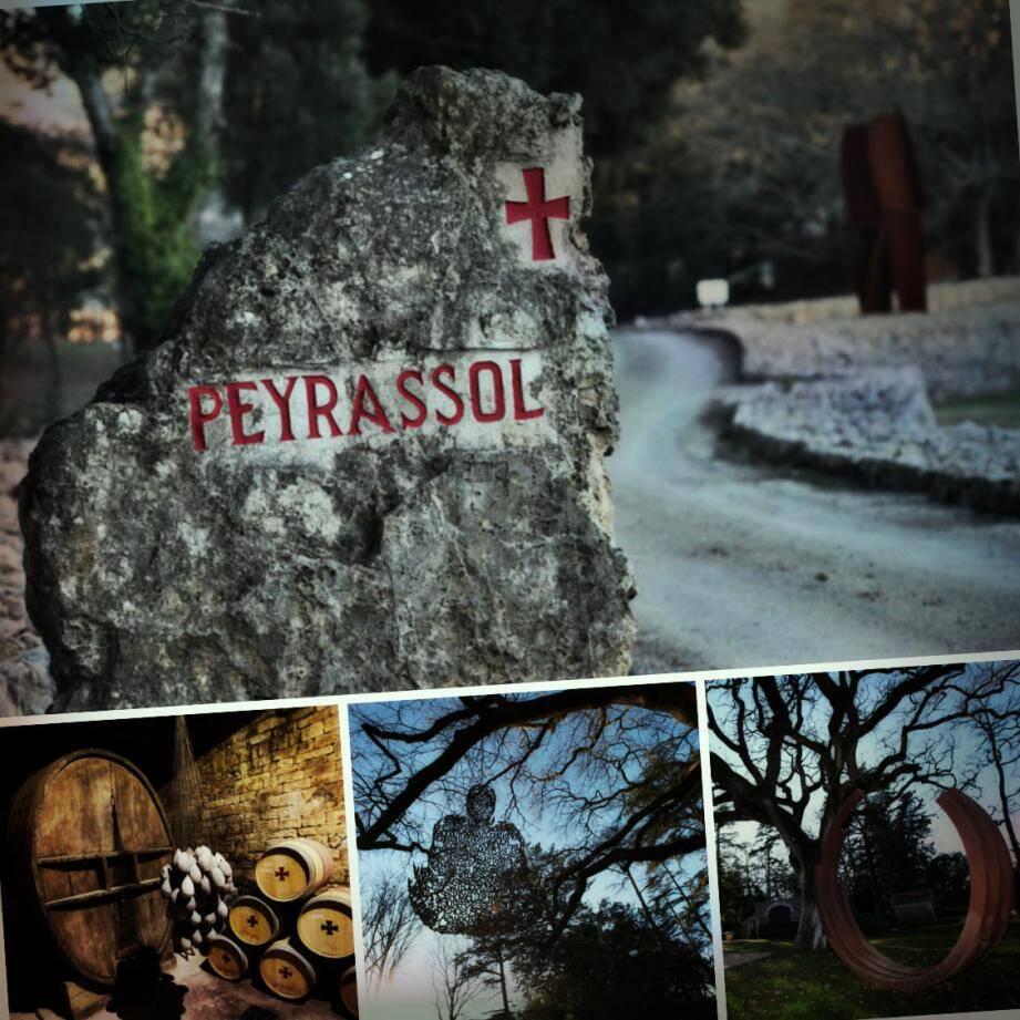 Le vignoble de Peyrassol détient depuis 2001 les plus belles sculptures à Flassans