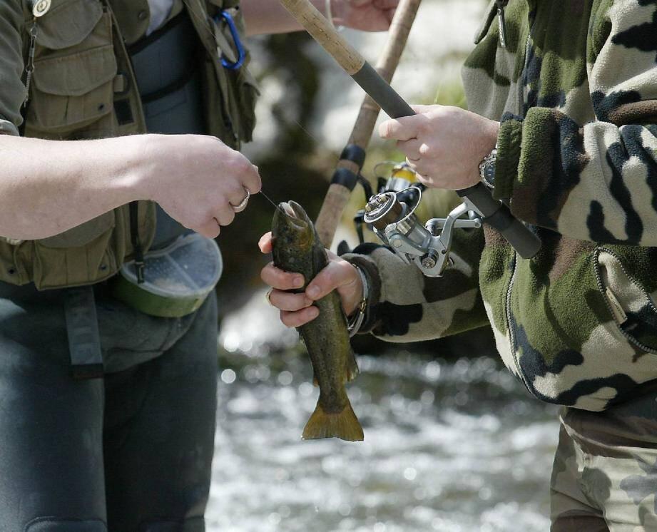 Dans les eaux de la Bévéra et de la Roya, on pêche essentiellement de la truite fario.