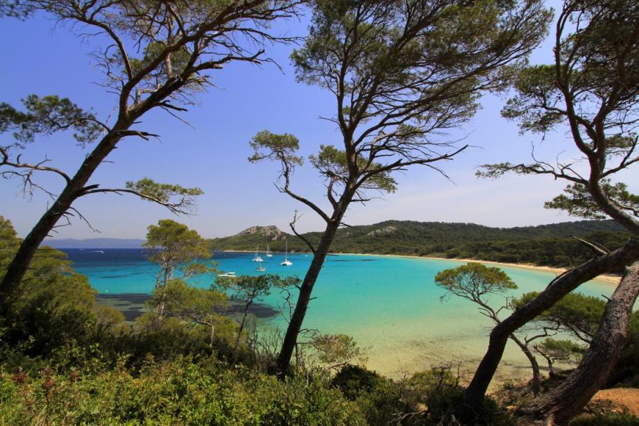 La plage Notre-Dame à Porquerolles vient d'être désignée plus belle plage d'Europe par l'organisation européenne de promotion de la culture et du tourisme en Europe European Best Destinations.
