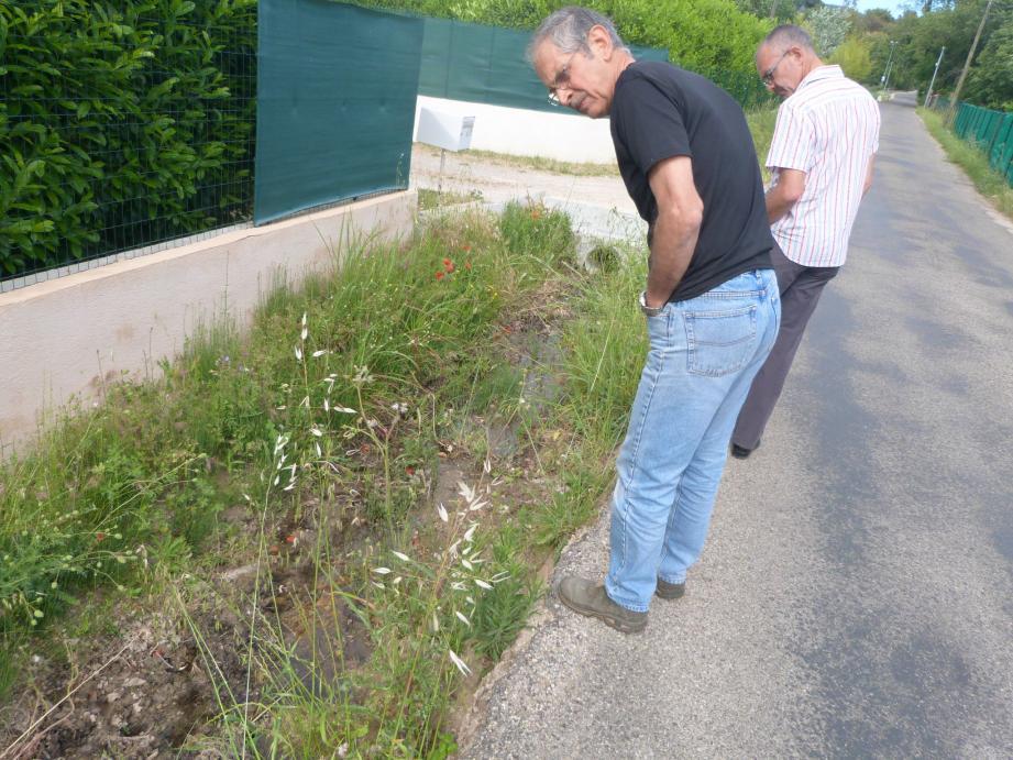 Les eaux stagnantes sont devenues insalubres selon les riverains. Elles sont en tout cas un nid propice à la prolifération des moustiques.