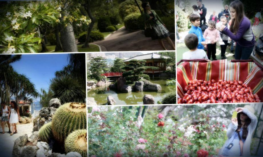 Le patrimoine de verdure monégasque s'étend sur deux kilomètres carrés et vingt-cinq hectares