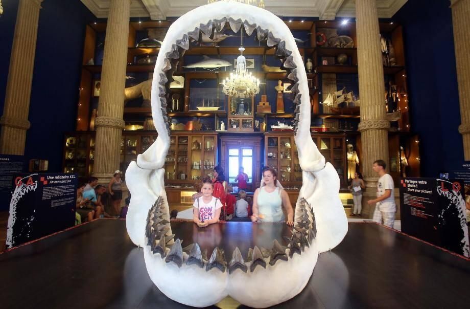 « 3,2, 1… Souriez ! » La mâchoire du mégalodon est très vite devenue le nouveau spot à photo du Musée océanographique.