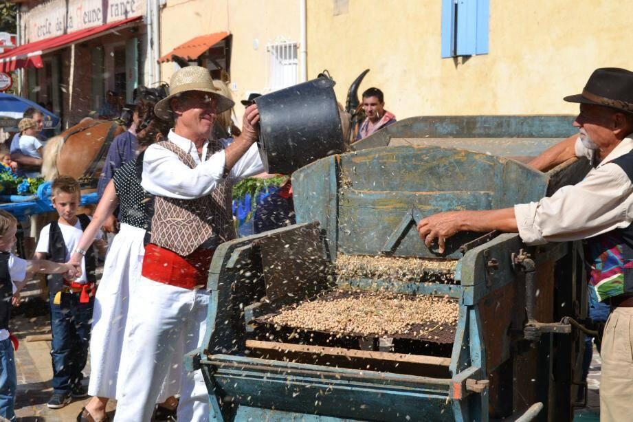 Les démonstrations de triage à l'ancienne font des heureux chaque année lors de la traditionnelle fête du pois chiche local. Le rendez-vous est donné le 13 septembre.