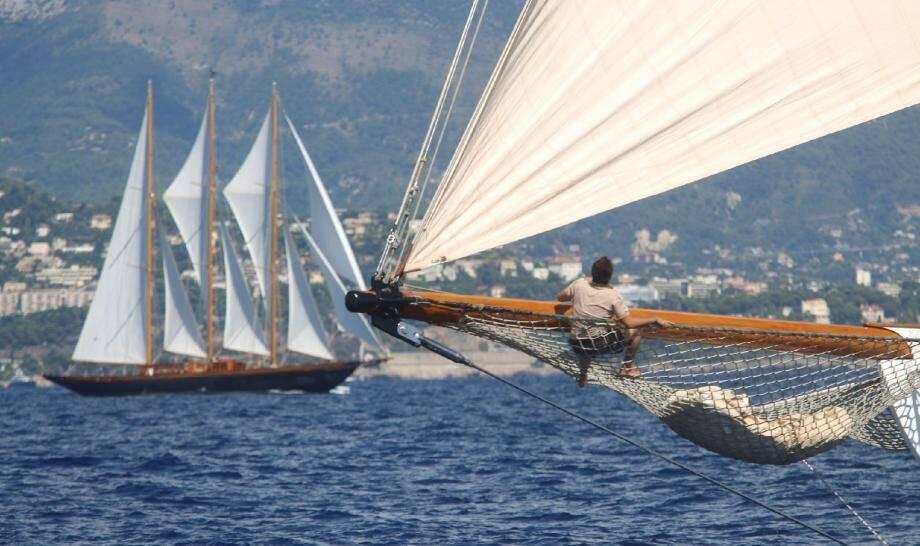 Durant cinq jours les plus beaux yachts classiques vont s'affronter en baie de Monaco.