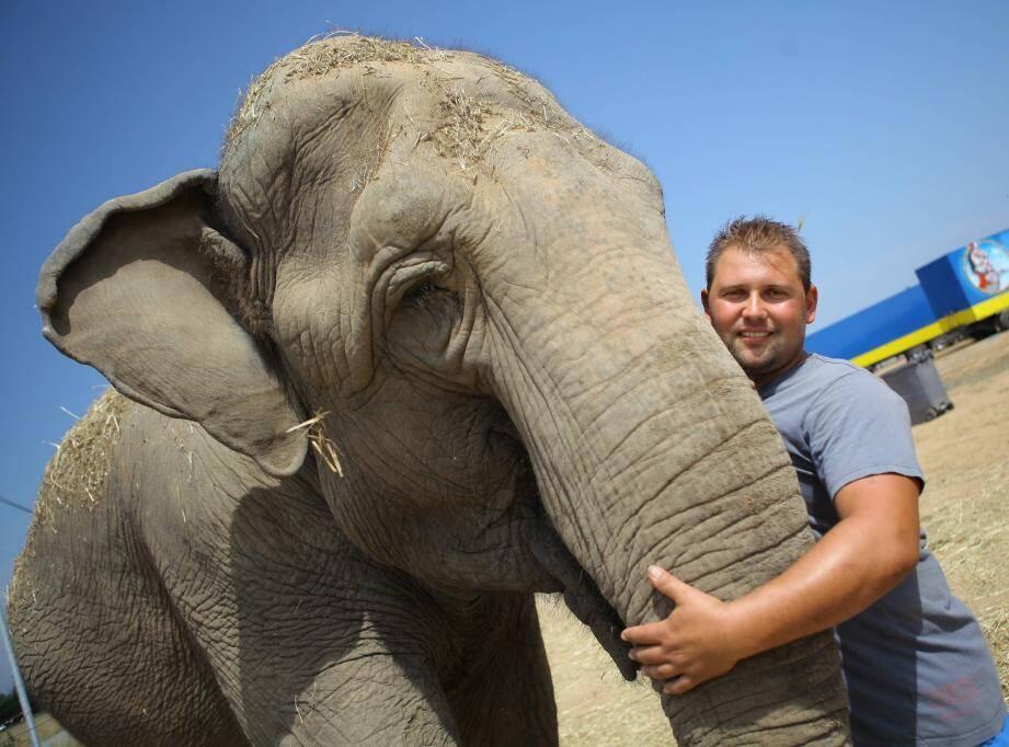 Le traitement des éléphants était notamment pointé du doigt.