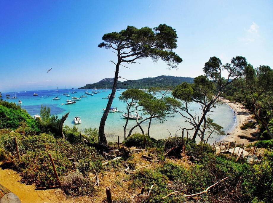La plage de PorquerollesPLAGE DE NOTRE DAME ELUE LA PLUS BELLE PLAGE D EUROPE