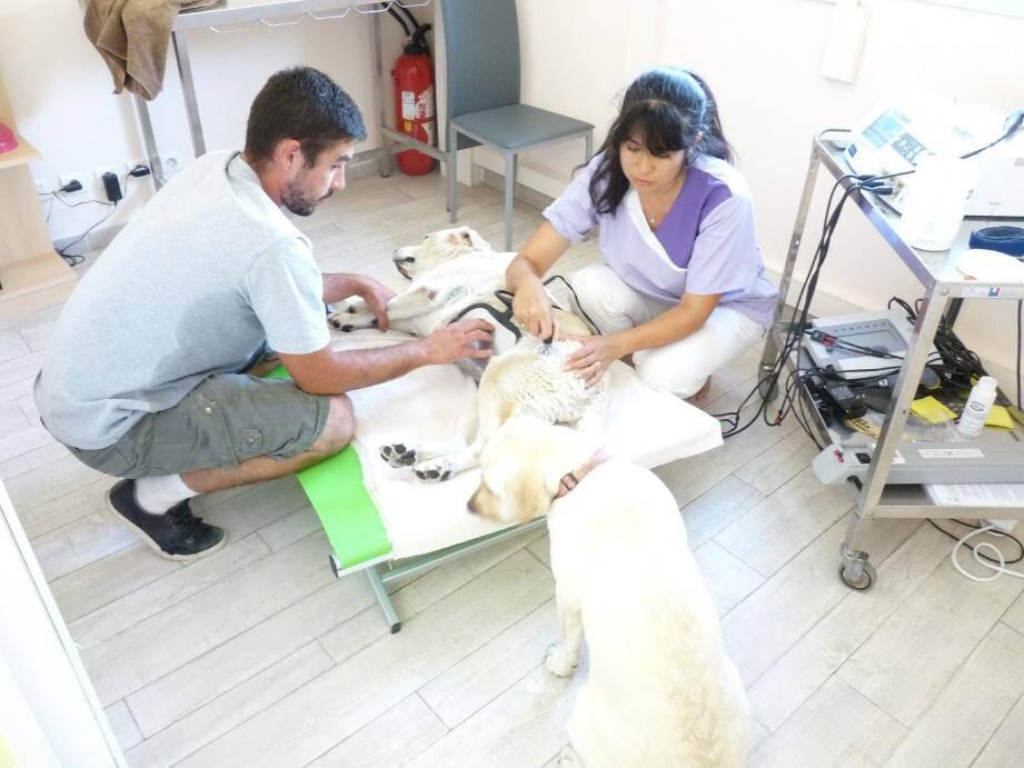 Séance de técarthérapie pour Amy et exercices proprioception pour Jessie.