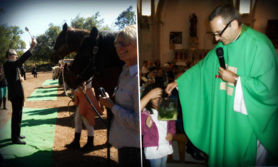 Même les chevaux et les escargots ont reçu la bénédiction du père Michel Kalkus à Trans-en-Provence