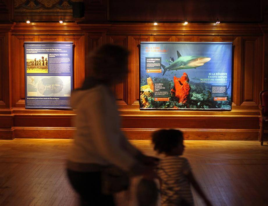L'exposition est accueillie dans la salle de conférence du musée, jusqu'au 2 novembre.