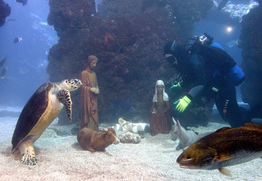 Des statuettes en pierre, d'1,20 m pour la plus grande, ont été immergées hier dans l'aquarium géant des requins au Musée océanographique, devant des écoliers… médusés.