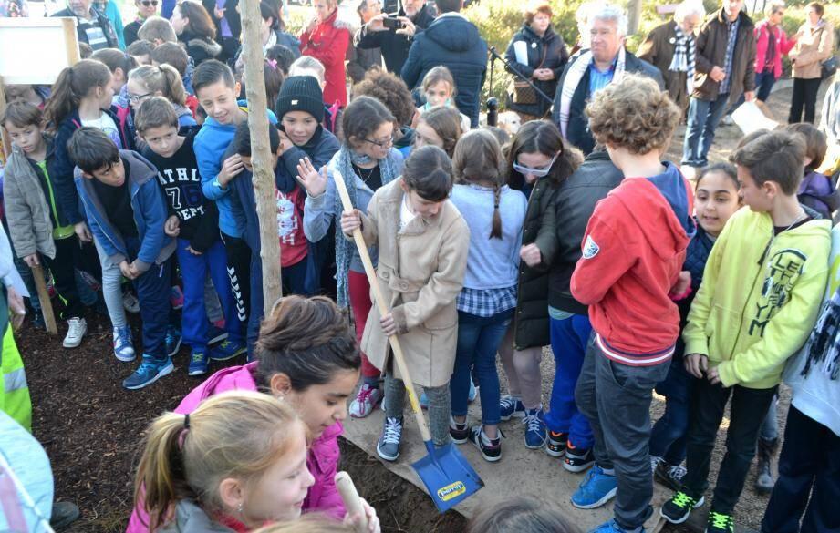 Après avoir accroché les feuilles sur la laïcité, les élèves ont planté un érable rouge du Canada.