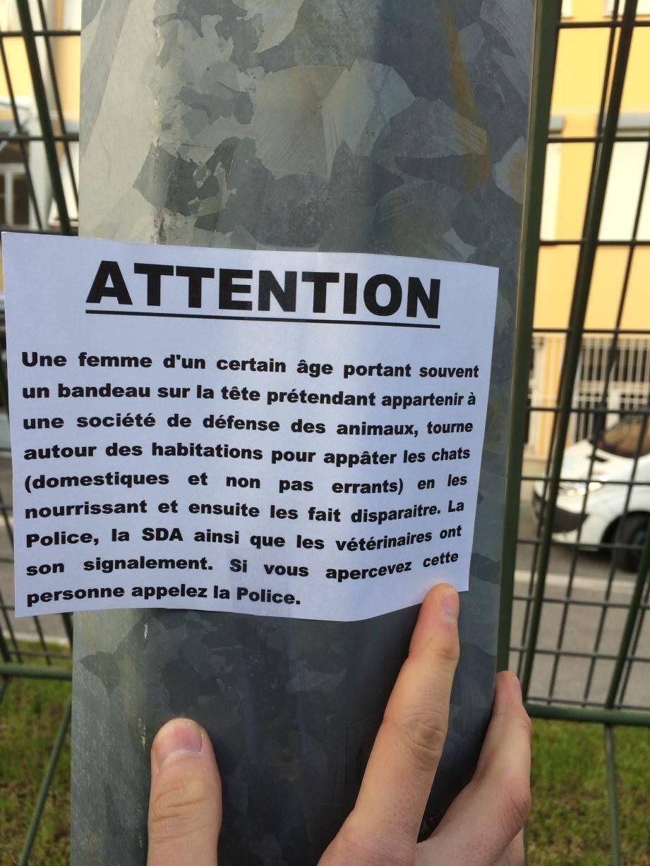 C'est dans le quartier du Parc-Impérial, et plus précisément avenue Buenos-Aires que 4 chats au moins ont disparu.