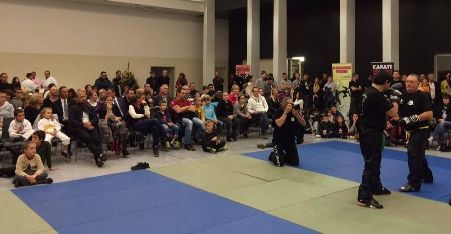 Le spectacle a été assuré par des démonstrations d'arts martiaux affiliés à la ligue de karaté.(DR)