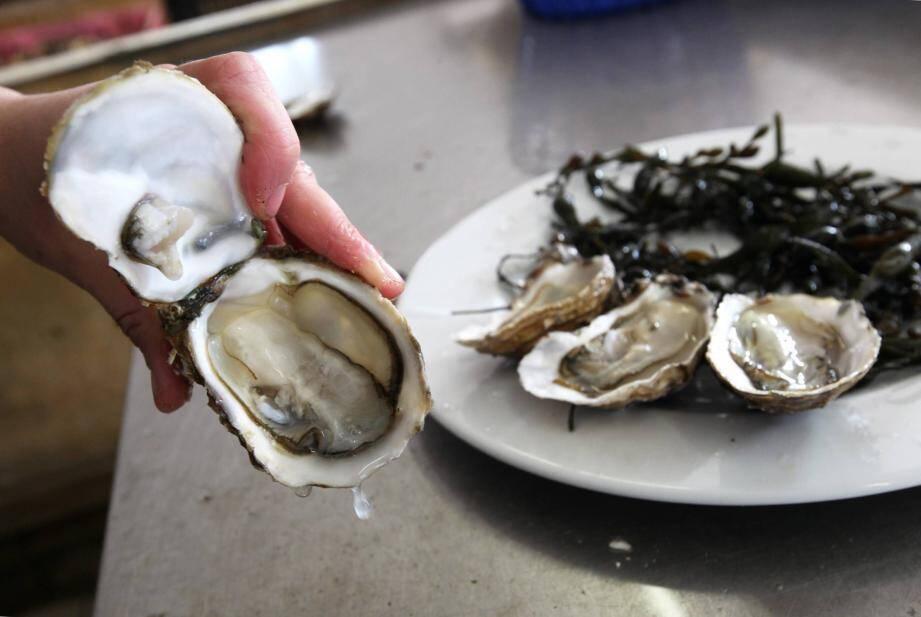 L'augmentation de la température des eaux côtières dynamise le cycle de virus et bactéries qui se retrouvent dans la chaîne alimentaire de l'homme, notamment dans les poisson et coquillages.