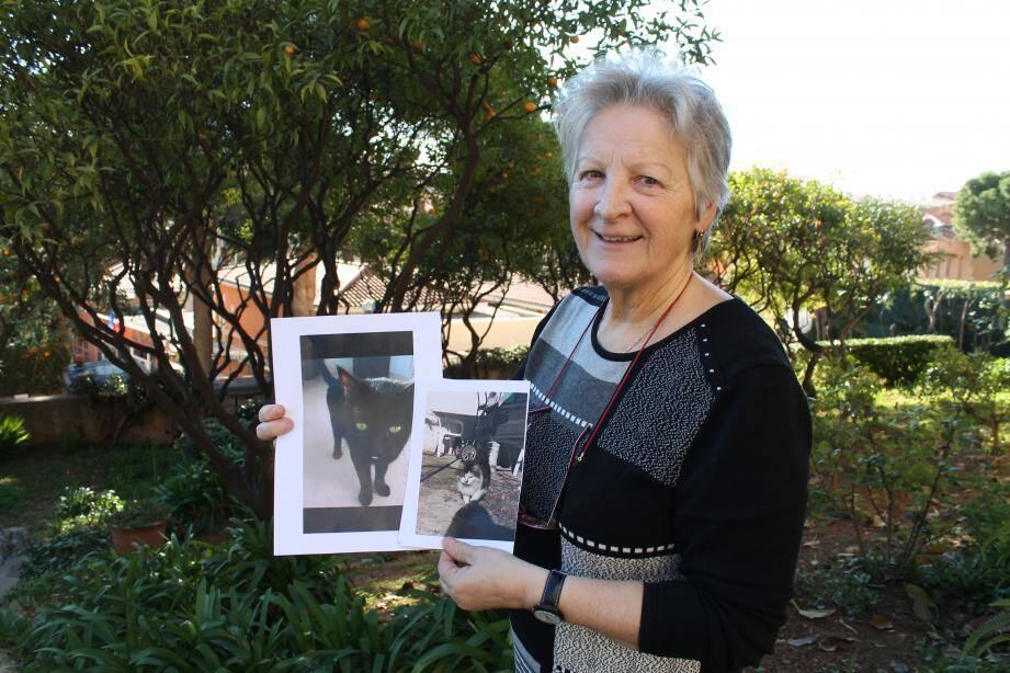 Âgée de 62 ans, Magge Bellone confie avoir placé 388 chiens et chats abandonnés ou maltraités.
