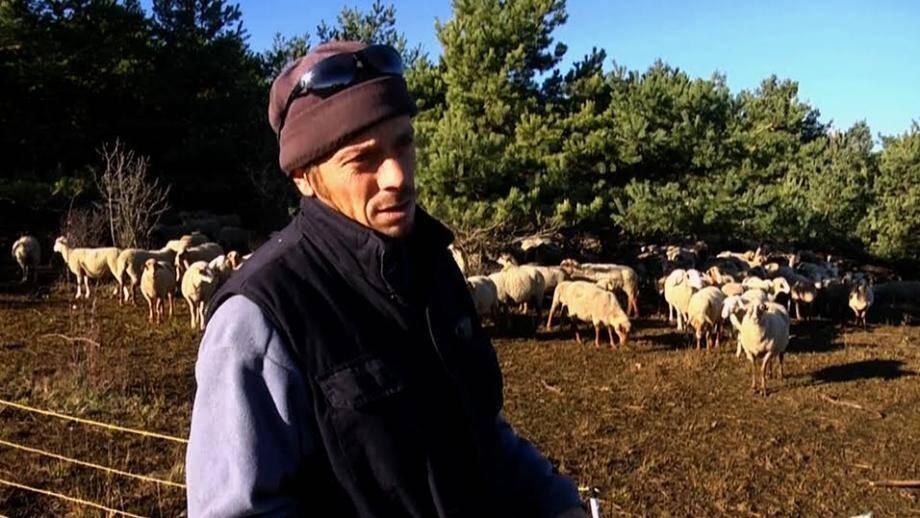 Jacques Courron, éleveur ovin à Gourdon : « On ne demande pas l'éradication, juste une régulation forte pour faire baisser la pression. »(Repro Philippe Bertini)