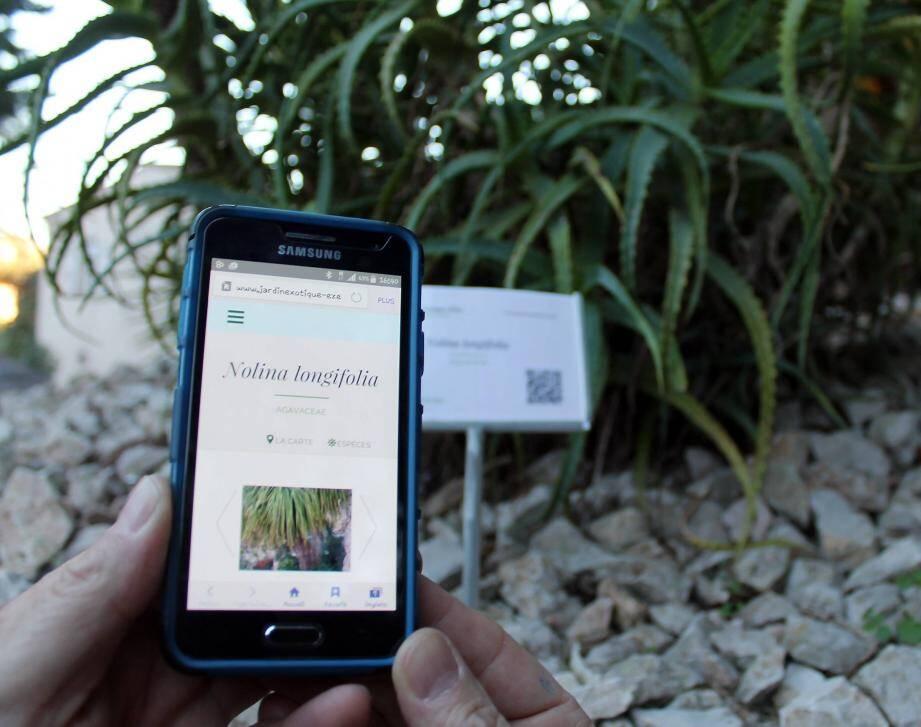Le « QR code » permettra d'avoir une fiche  complète des plantes via un smartphone.