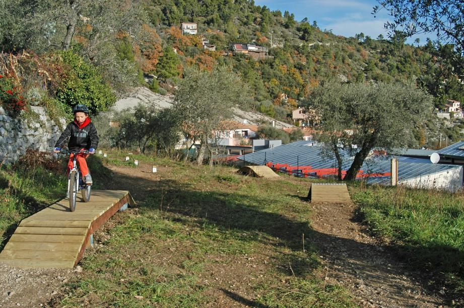 Un parcours de VTT sous les oliviers.