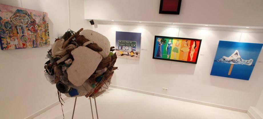 Il y a le choix, sur les murs de la galerie l'Entrepôt, entre 35 toiles sur le thème du climat et de l'écologie.