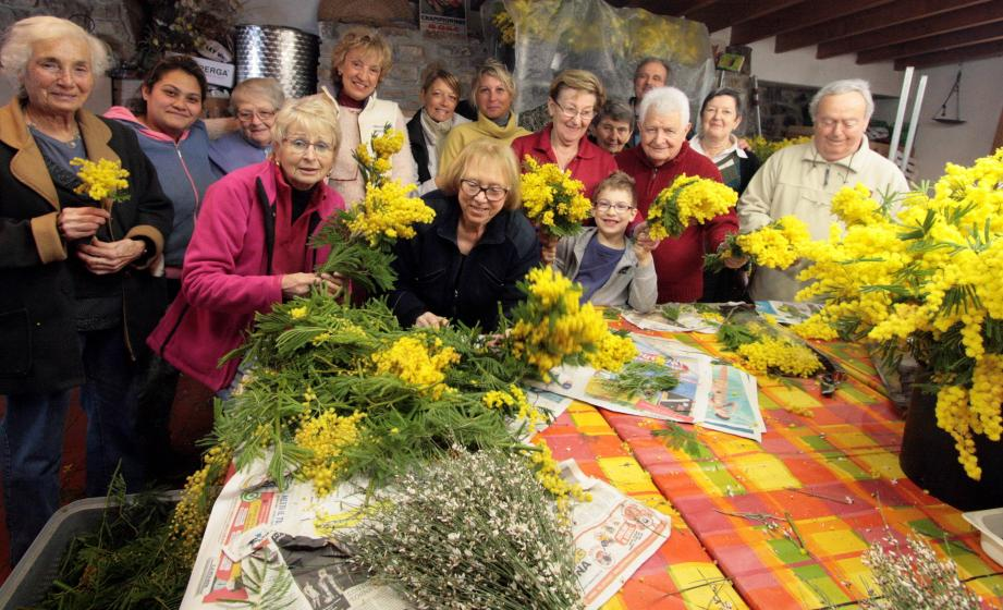Escarénois et Seborgais ont préparé plus de trois mille bouquets de mimosa qui seront offerts aux visiteurs de la foire de Nice au stand 800.