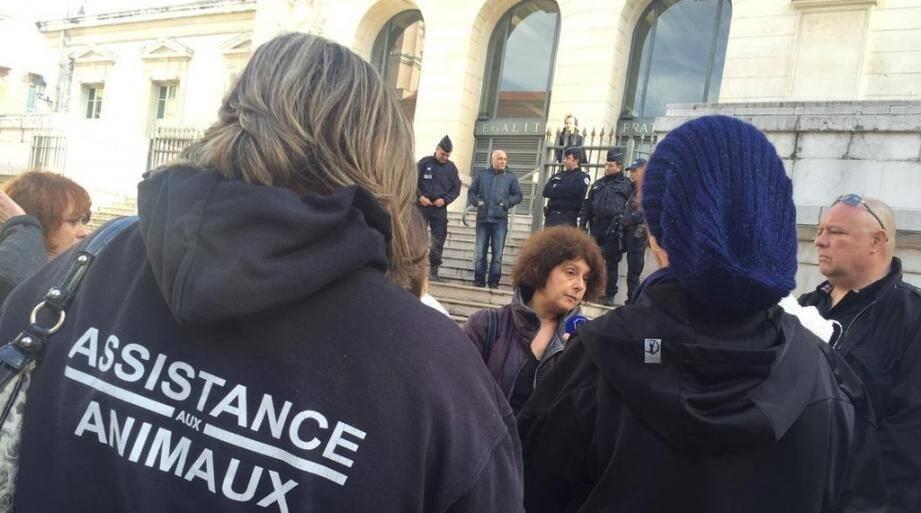 Une trentaine de représentants d'associations sont rassemblés devant le palais de justice de Nice, où est jugé en comparution immédiate ce lundi après-midi le tortionnaire présumé du chat brûlé et défenestré la semaine dernière.