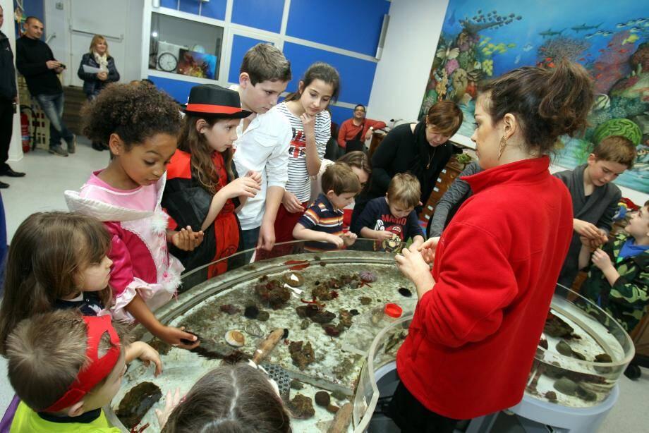 Toucher des animaux marins avec la main : les enfants adorent.