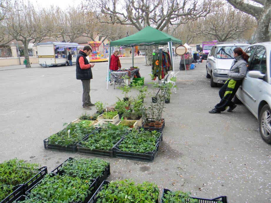 Les visiteurs ont choisi parmi les nombreux  plants de légumes.
