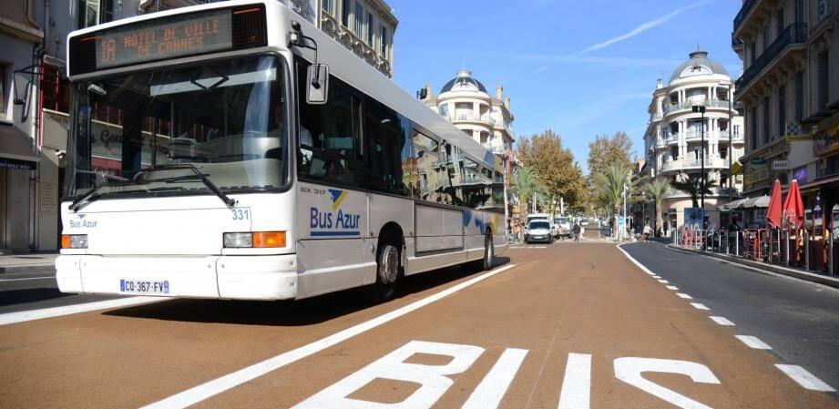Le réseau de bus Palm Bus.